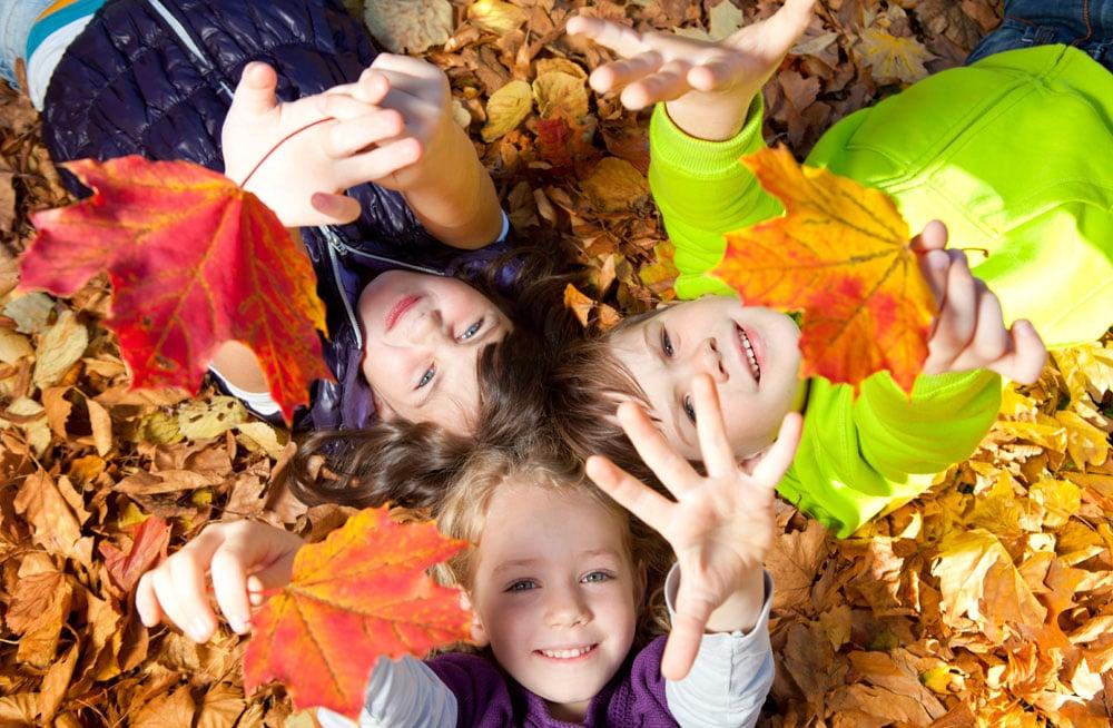 natuurbingo herfst