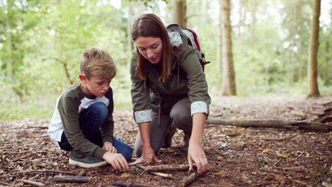 skattejakt i skogen
