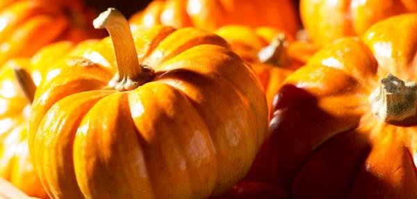 halloweenquiz_800