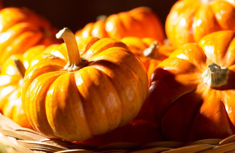 halloweenquiz